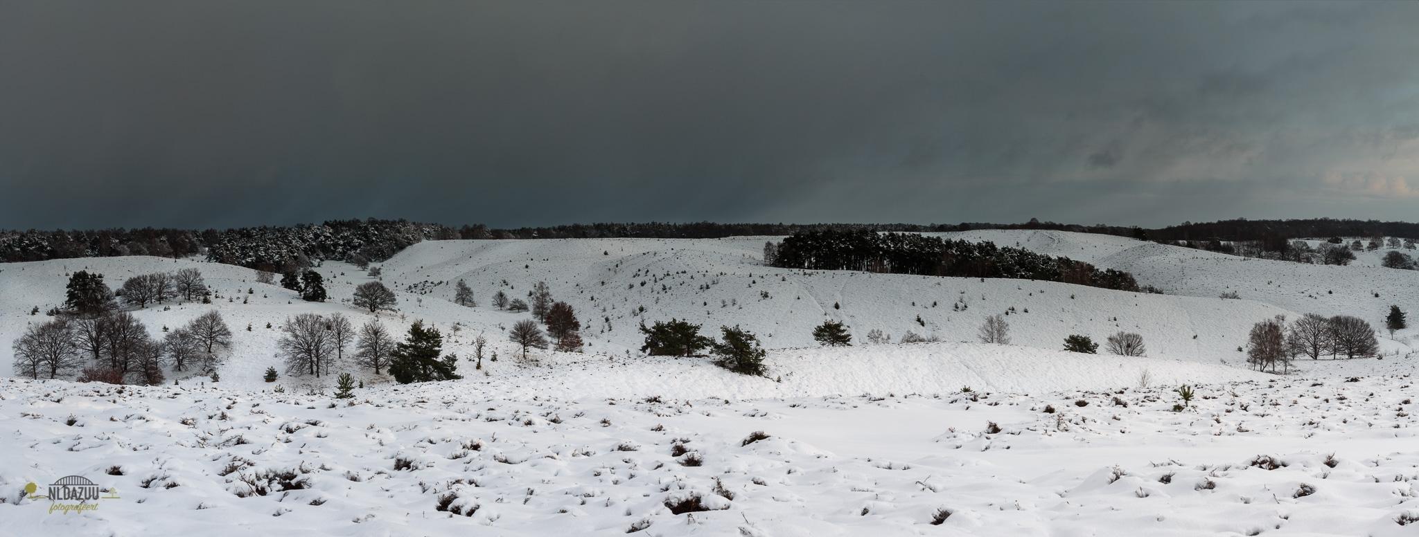 Winter panorama van de Posbank met op de achtergrond een winterse bui