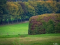 Workshop-Herfstlandschappen-0007