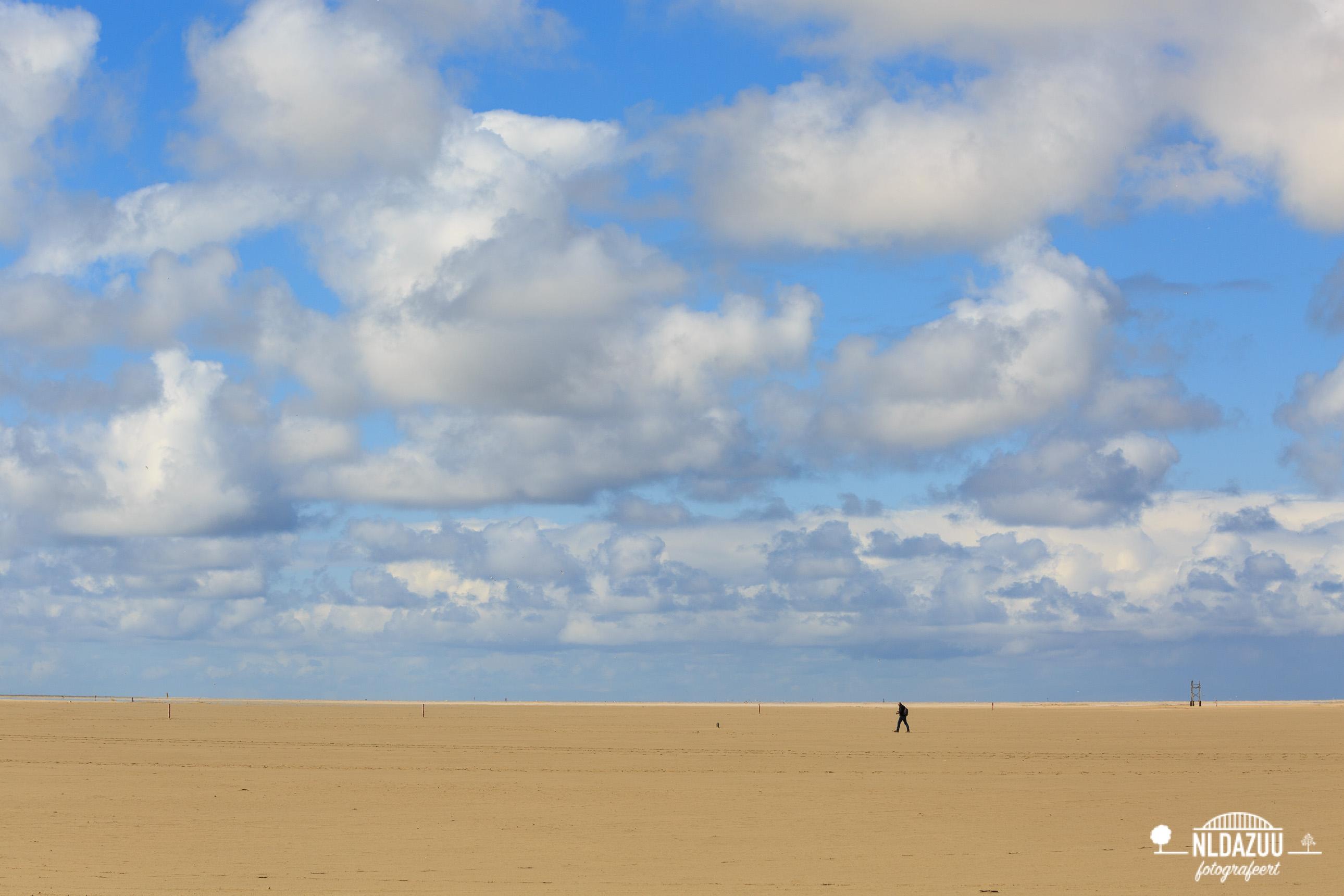 Wandelaar op het Texelse strand bij de Horsjes