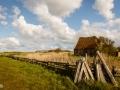 _nldazuu_fotografeert-Texel_18