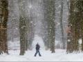 Walking through the flakes of snow