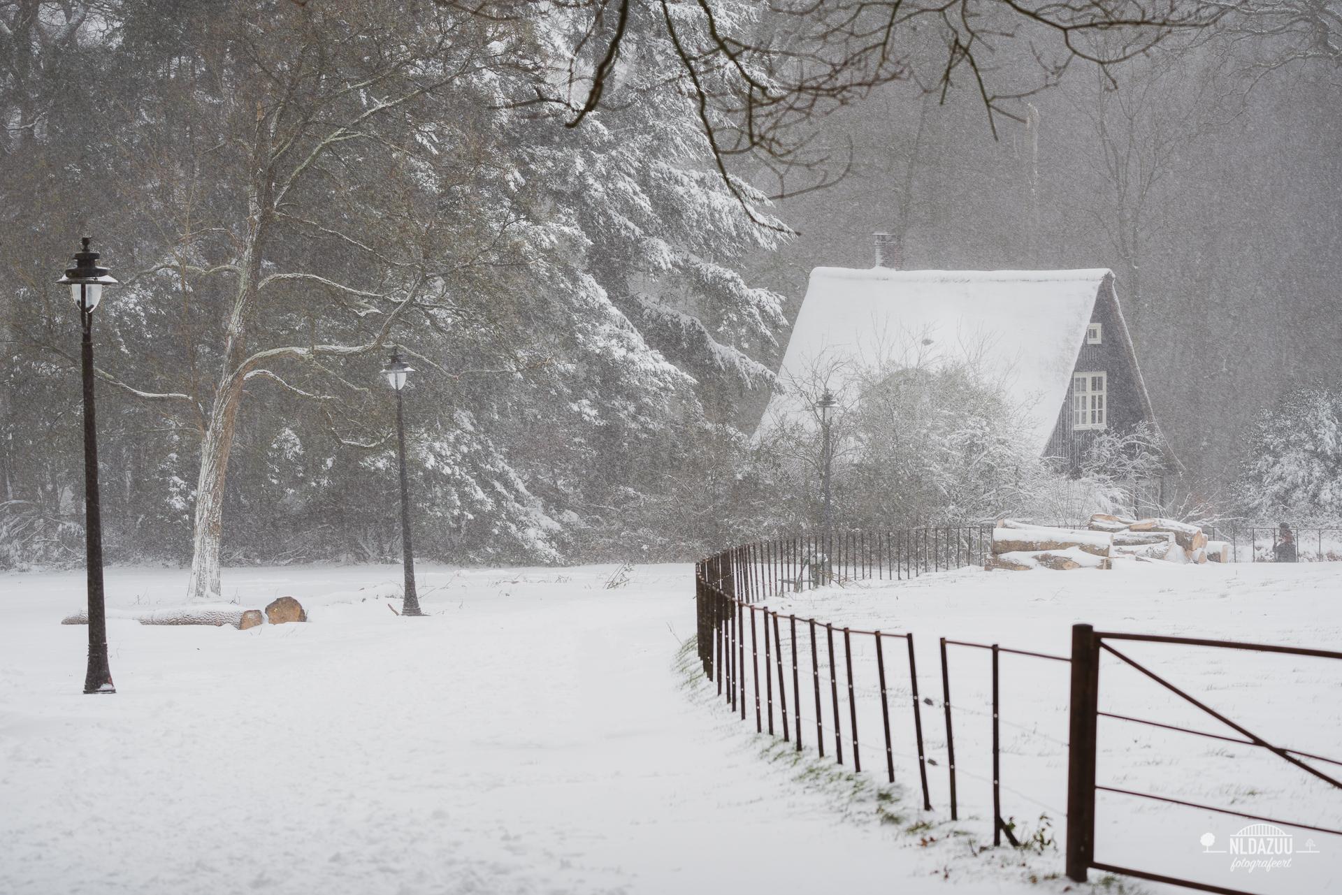 WinterseBeelden20210_0015