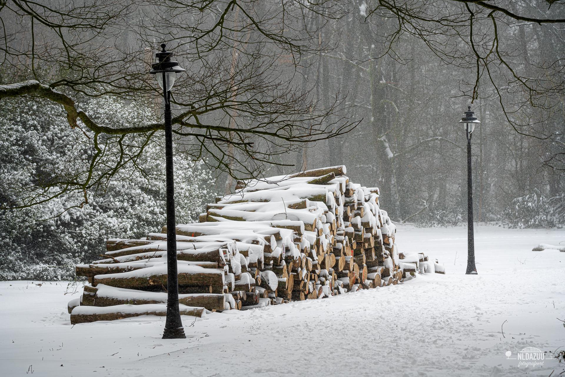 WinterseBeelden20210_0016