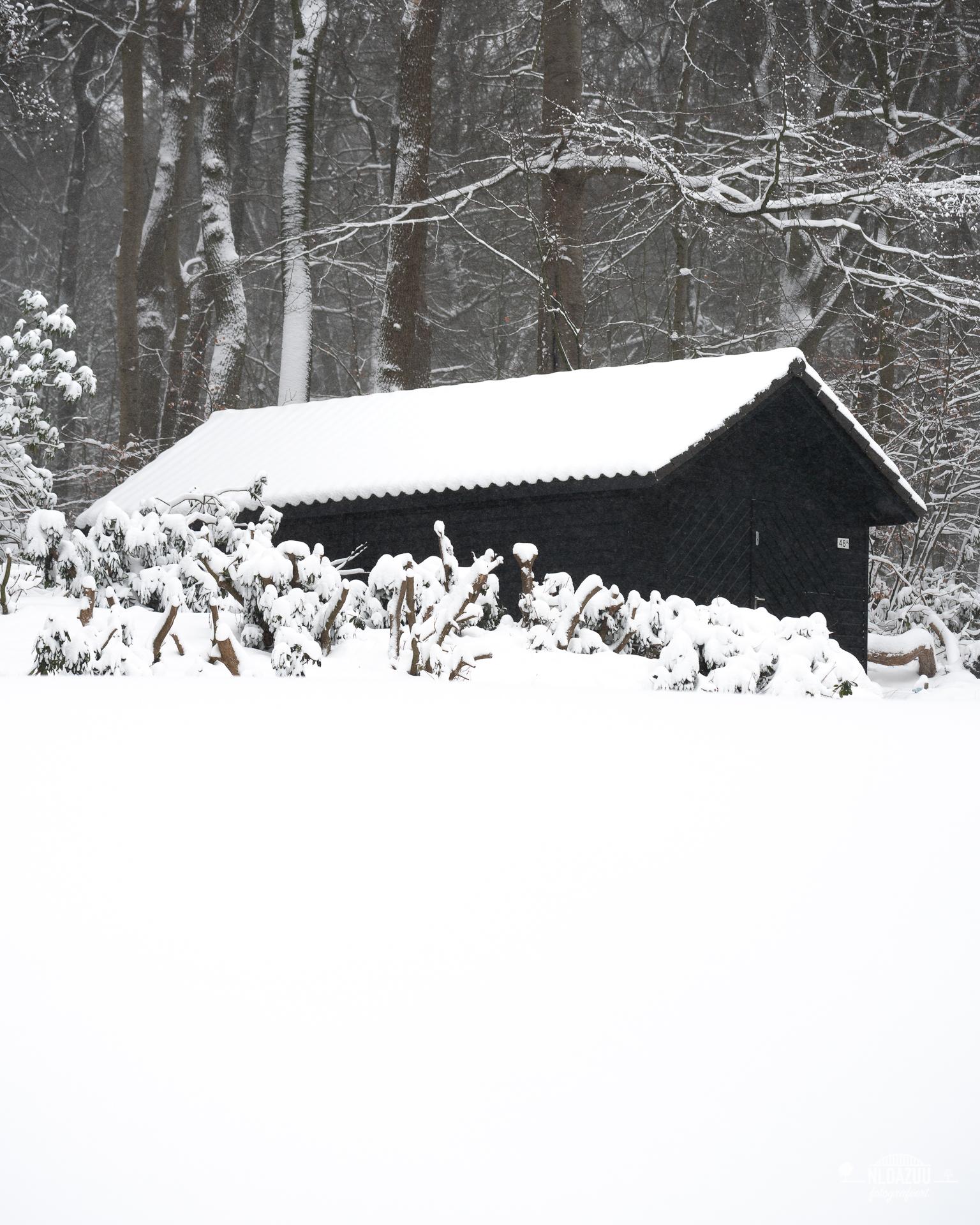 WinterseBeelden20210_0020