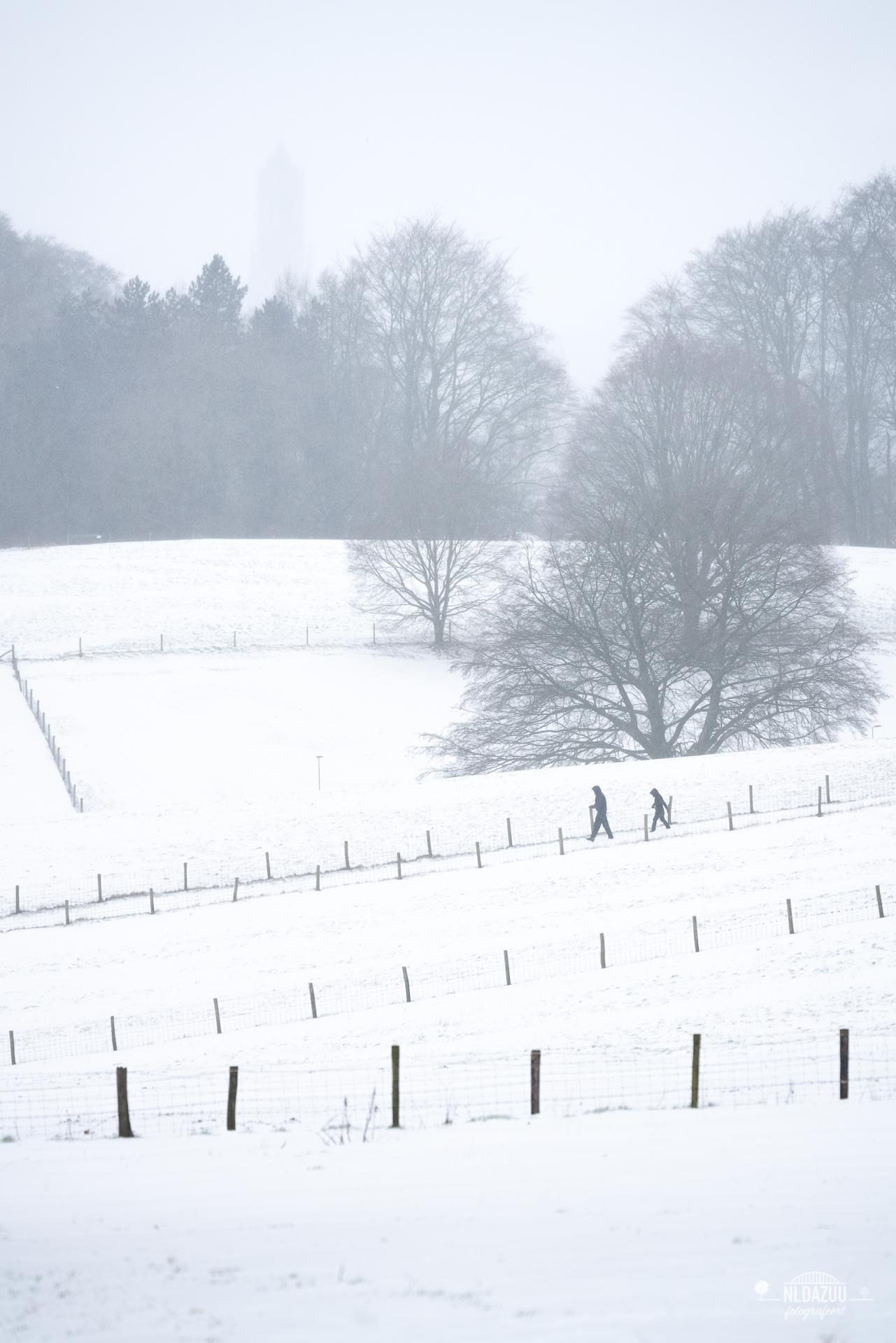 WinterseBeelden20210_0025