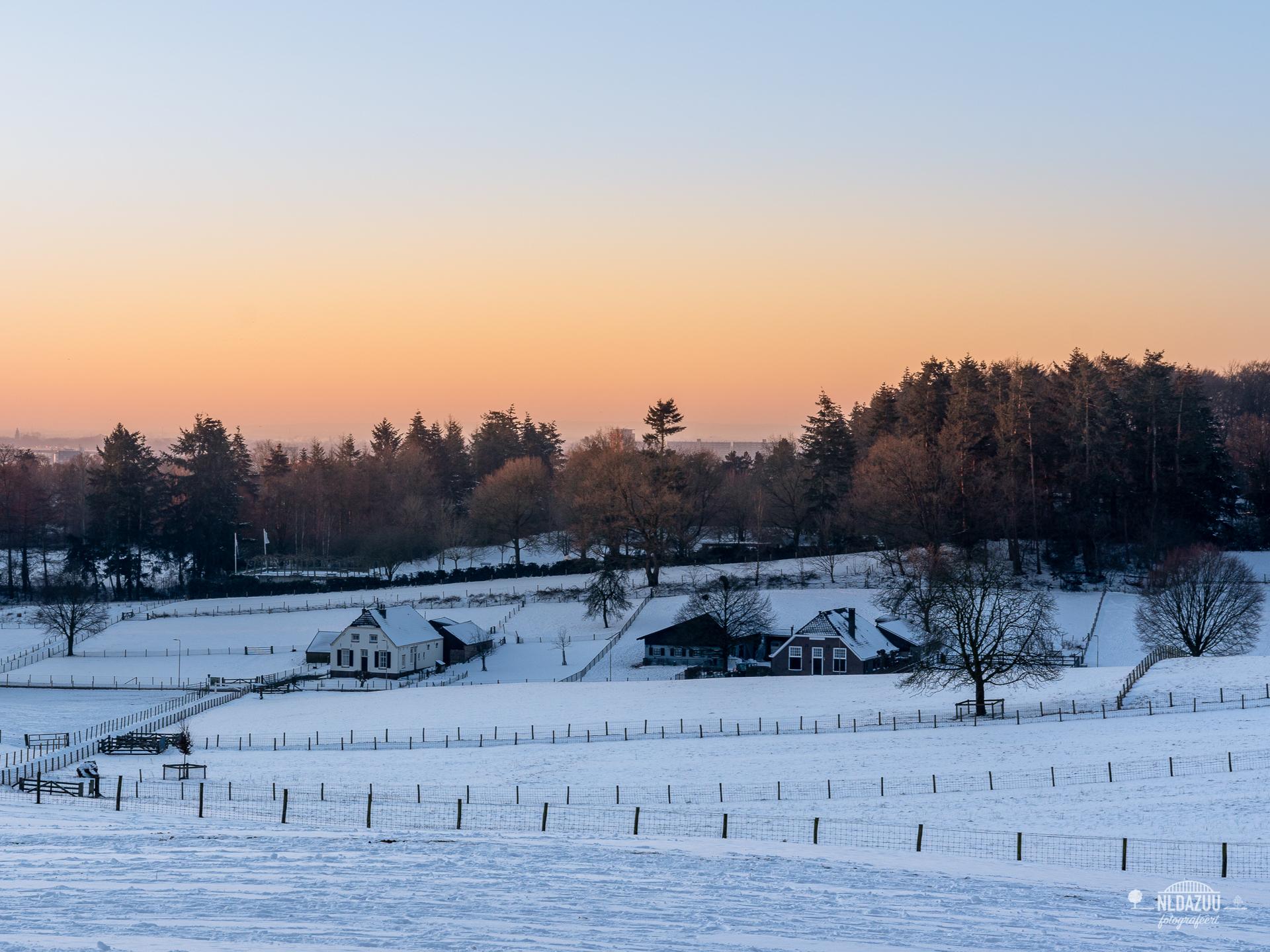 WinterseBeelden20210_0041