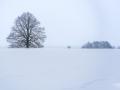 WinterseBeelden20210_0006