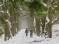 WinterseBeelden20210_0021
