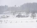 WinterseBeelden20210_0024