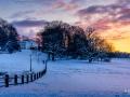 WinterseBeelden20210_0029
