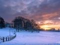 WinterseBeelden20210_0031
