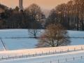 WinterseBeelden20210_0046