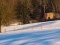 WinterseBeelden20210_0049