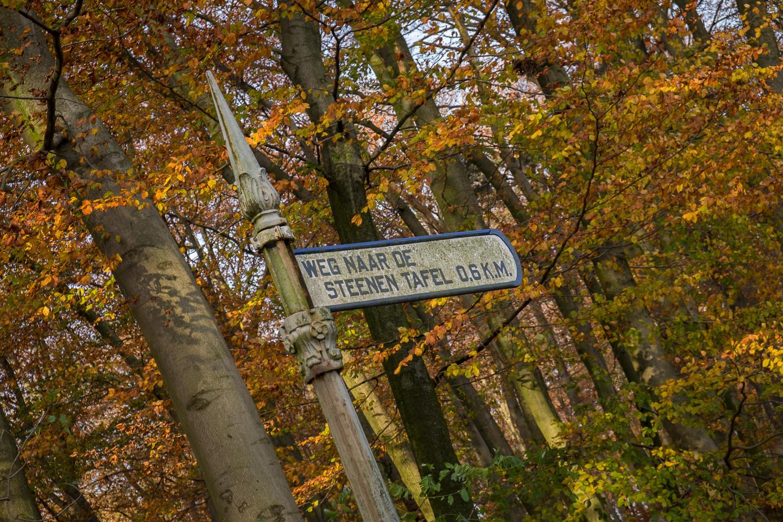 verkenningstoch, park Klarenbeek, Arnhem, vergezicht