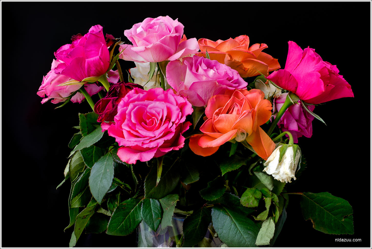 Foto7daagse, dag 1: Kleurig bosje bloemen