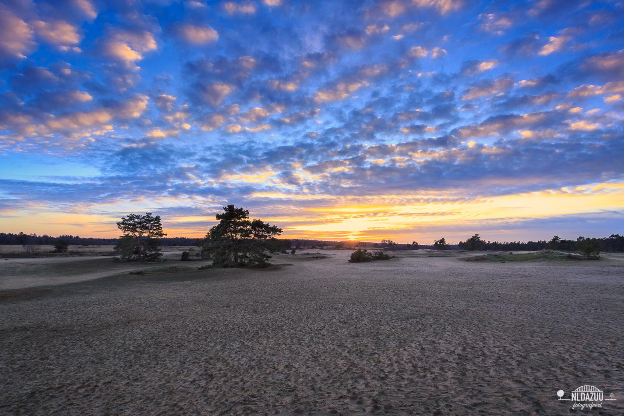 pre blue hour op het Roosendaalse veld