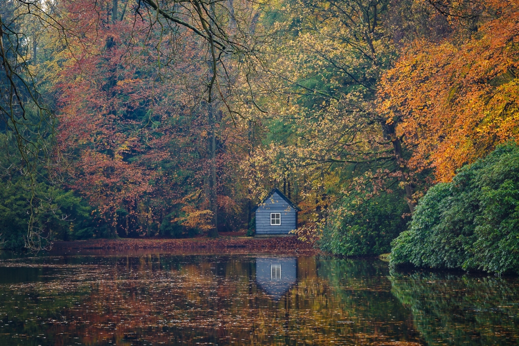 Paleis het Loo, herfst, Made in Holland, nldazuu, bosfotografie, CEWE Photo Awards 2018