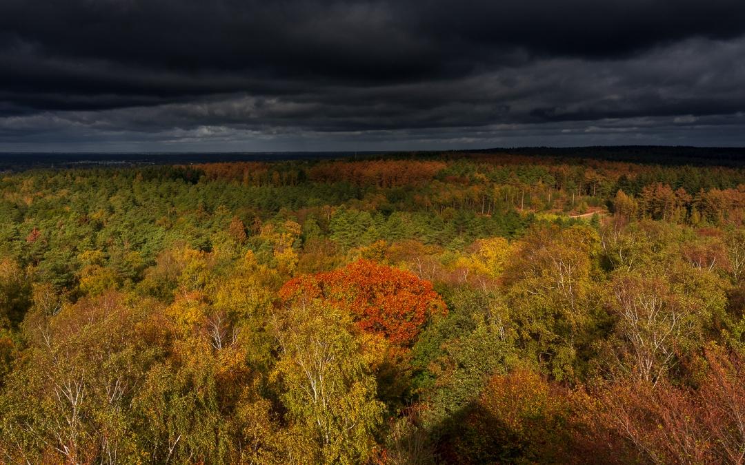 Oktober: jippie het is weer herfst