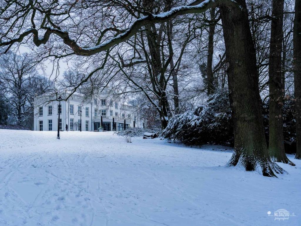 sonsbeek park Arnhem winter 2019