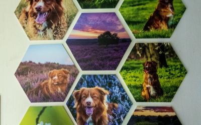 Maak eens 9 Hexagons, doe meer met je foto's!