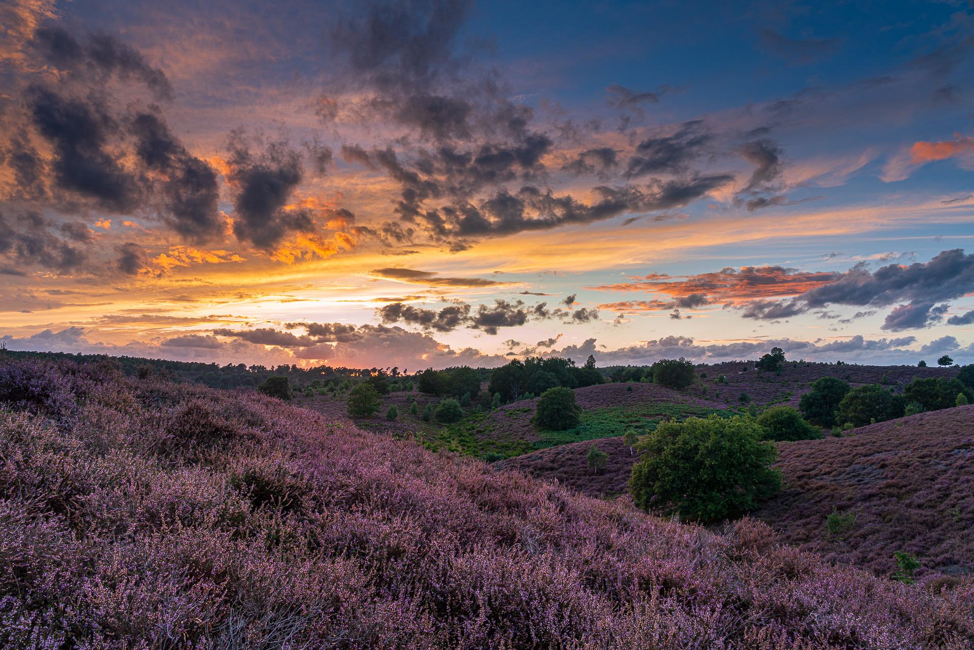 Posbank kleurrijke zonsondergang