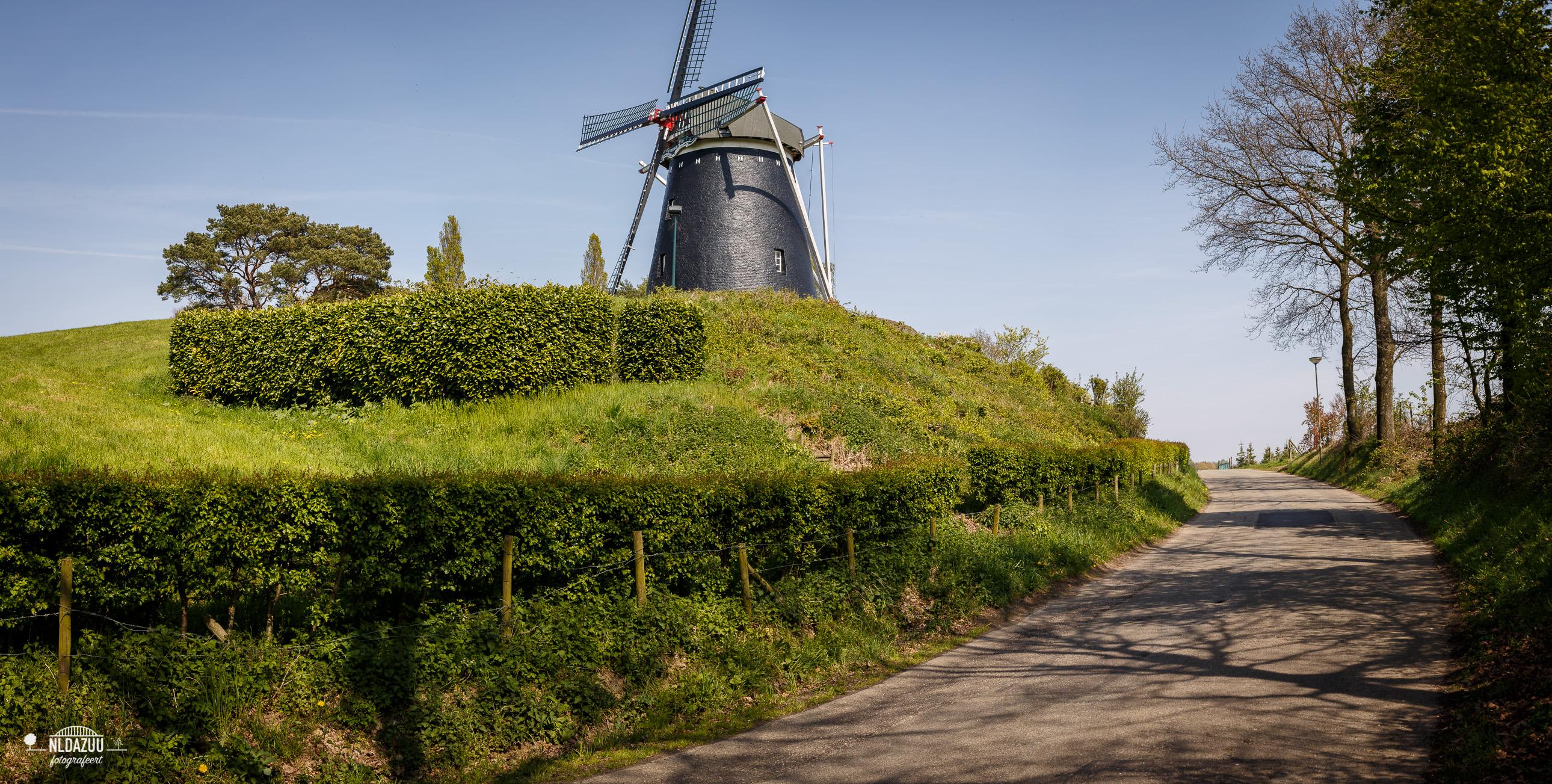 Dag 49: Limburg